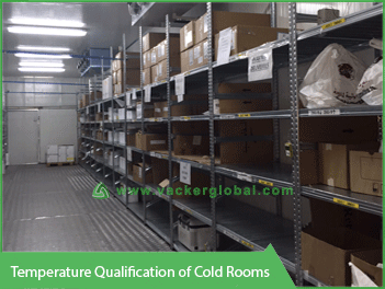 Temperature Qualification of Cold Rooms VackerGlobal