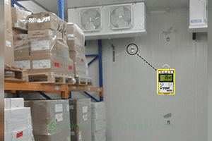 Temperature mapping & validation for cold rooms & freezer